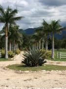 CityMax  vende finca en Nicoya Guanacaste, 33.5 Hectáreas,