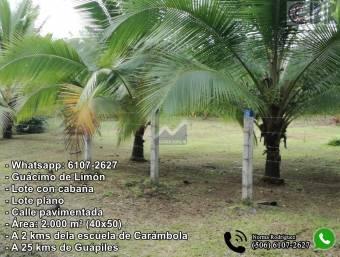 Lote en Guácimo de Limón - RONO Whatsapp 6107-2627