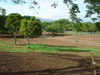 commercial or residential land for sale Alajuela