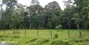 Excelente terreno en Guápiles.  En Venta   CG-20-1577