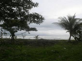 Exclusiva  Finca en  Guápiles.  En Venta   CG-20-1192