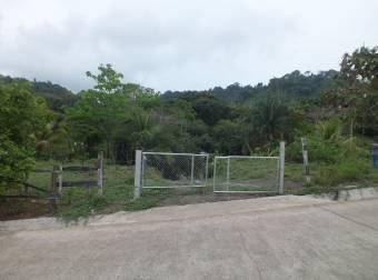 Propiedad segregable con excelente ubicación en Turrubares, San José. #20-1346