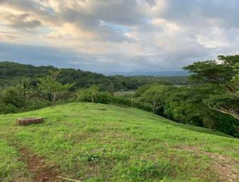 Se vende terreno en Lagunas de Turrubares