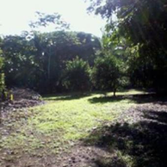 Playa Matapalo (Aguirre Puntarenas)