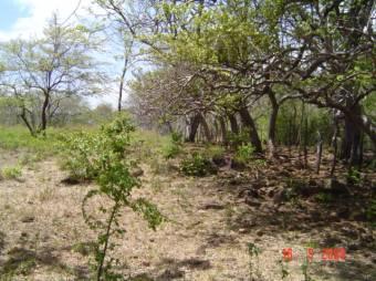 EN CAÑAS PRECIO DE OPORTUNIDAD, FINCA DE AGRICULTURA Y REFORESTACIÓN. COD:259