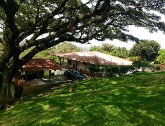Linda casa con vista y árboles gigantes