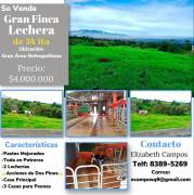 34ha dairy farm for sale, with 2,065 shares of 2 Pinos