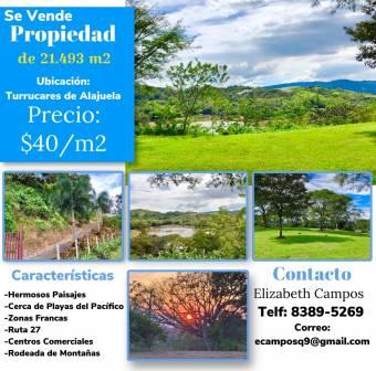 Property of 21,493m2 for sale, in Turrucares de Alajuela