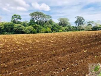 Terreno para construir Fortuna, San Carlos, GANGA