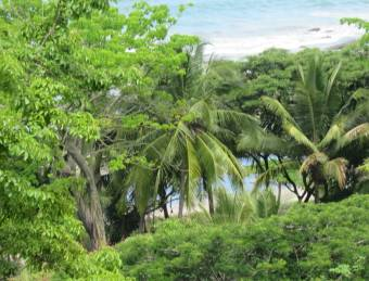 Terreno en Playa Hermosa de Cóbano
