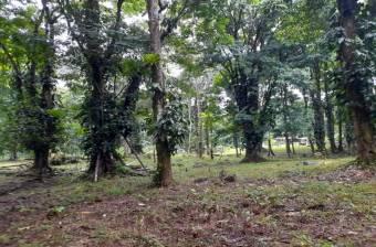 Land on Sale, Residencial el Tucan, Rio Danta, Guapiles