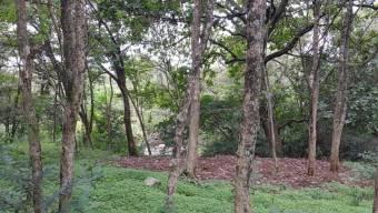CG-20-1137.  Exclusivo Terreno con 8,296Mts2  en Venta.  En AlajuelaElCoyol.