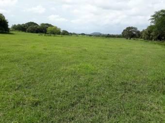 CG-20-827.  Exclusiva Finca con 500,000 mts2 en Venta.  En Liberia.
