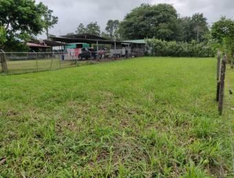 Excelente terreno  en Venta, Cerca de la Colonia de Guápiles   CG-20-1427