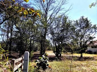 CityMax vende terreno de 8mil m2 en zona Campo Lago, Sol Naciente, ¡muy cercano a Lindora!