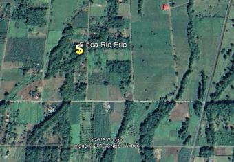 Alquiler de Lote en Sarapiqui