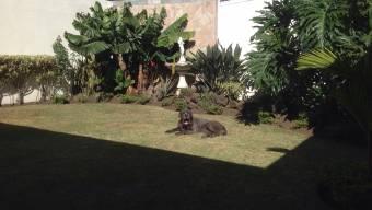 Alquilo elegante casa en Nunciatura, Sabana Oeste