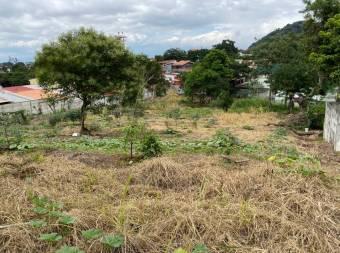 Se vende terreno para desarrollo en Desamparados