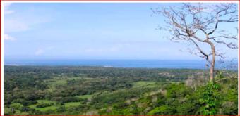 Se vende finca Santa Cruz Guanacaste, Excelente oportunidad ganga.