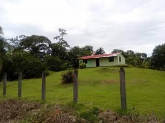 CG-20-1180.  Oportunidad de Inversión,  Finca  en Guápiles.  En Venta