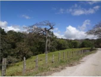 V#210 Maravillosa Finca en Venta/Guanacaste