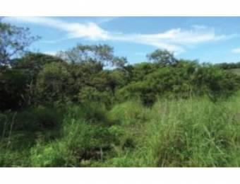 V#209 Esplendorosa Finca en Venta/Guanacaste