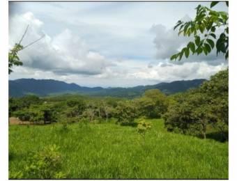 V#202 Bella Finca en Venta/Guanacaste