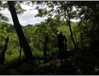 V#232 Bello Lote en Venta/Santa Cruz-Guanacaste