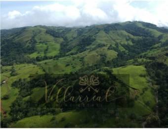 V#252 Amplia Finca en Venta/Hojancha-Guanacaste