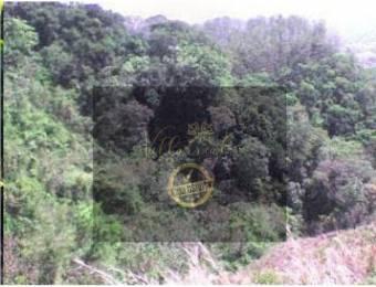 V#246 Espectacular Finca en Venta/Hojancha-Guanacaste