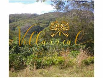V#306 Majestuosa Finca en Venta/Guanacaste