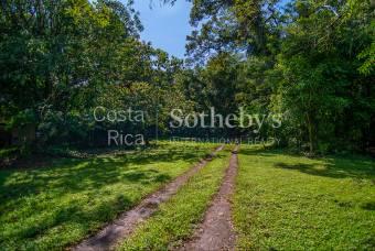 La Dorothea Development Land