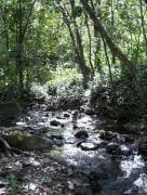 Finca en Venta en La Palma Piedras Negras, San José